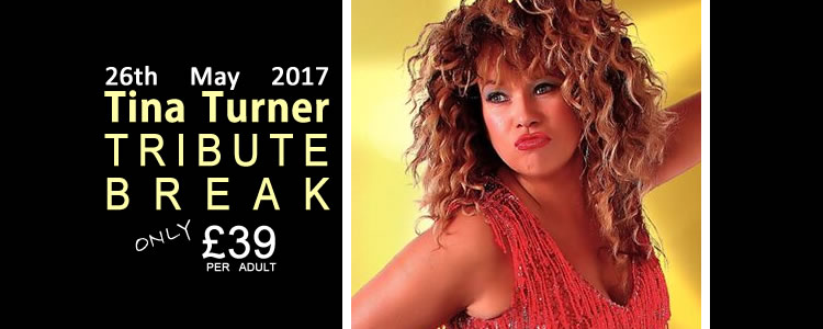 Winter 2017_4_TinaTurner